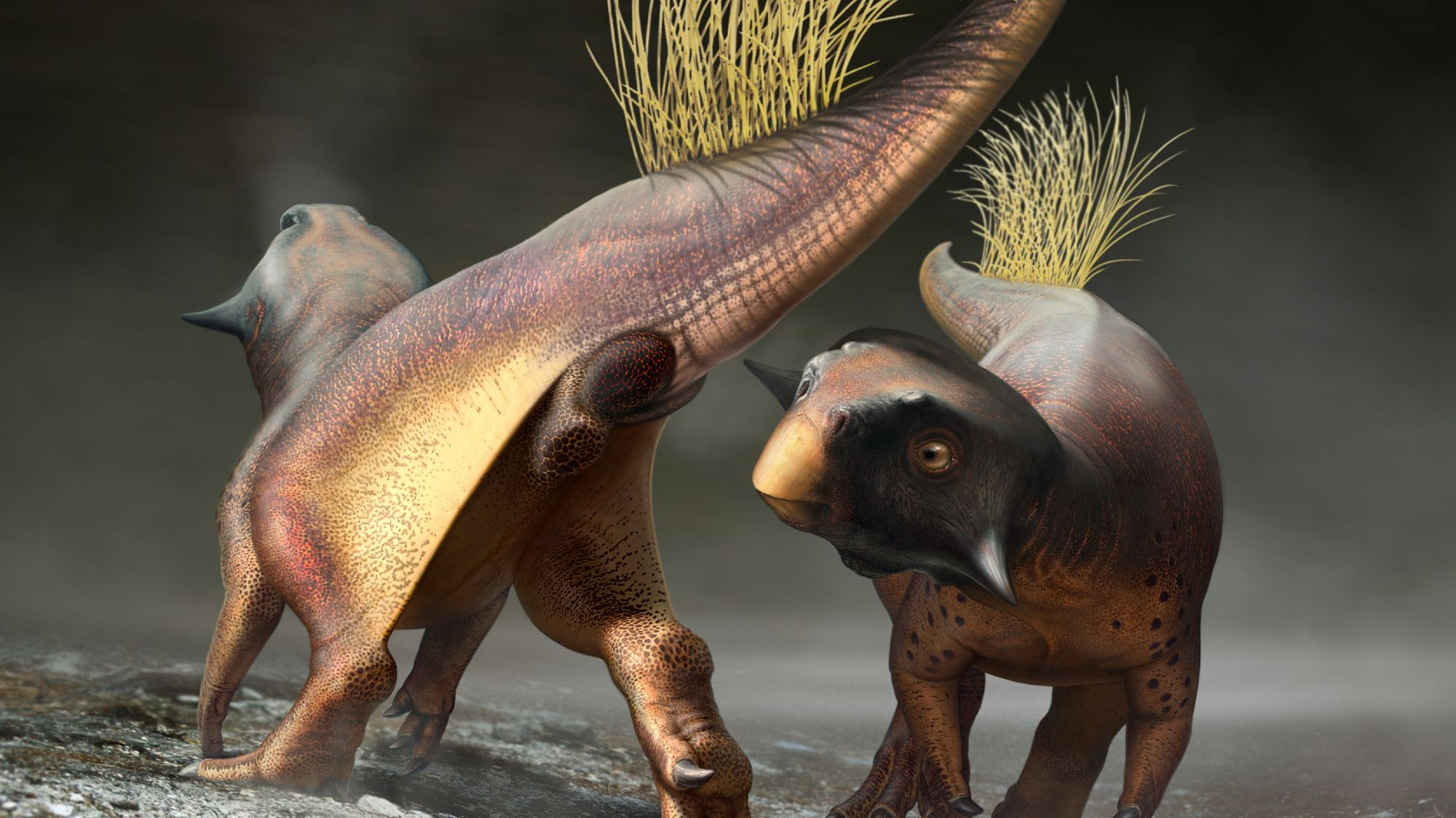 Paleontologists reconstructed a bothell of a dinosaur
